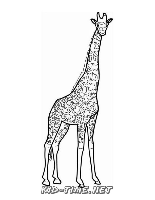 realistic-giraffe-coloring-pages-001 - Kids Time Fun ...