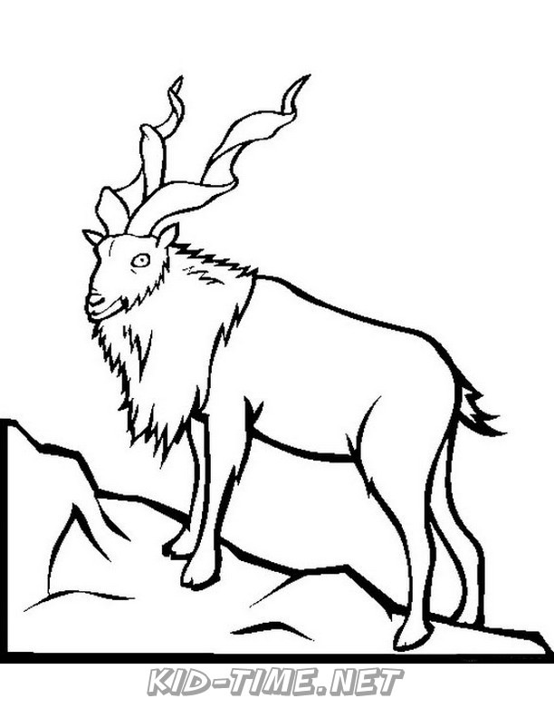 gazelle-coloring-pages-011 - Kids Time Fun Places to Visit ...
