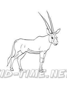 Oryx – Animals Coloring Book Pages Sheets – Kids Time Fun ...