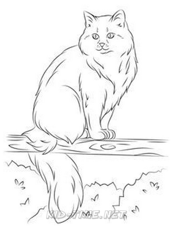 - Cat – Page 3 – Kids Time Fun Places To Visit And Free Coloring Book Pages  Printables